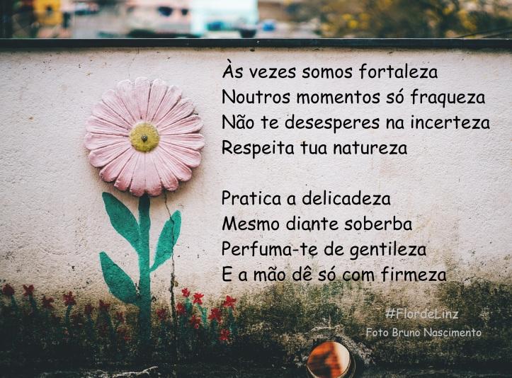 flor-de-linz-citacao-poema-de-lis
